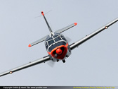 Buurse Airshow - the Netherlands 2008